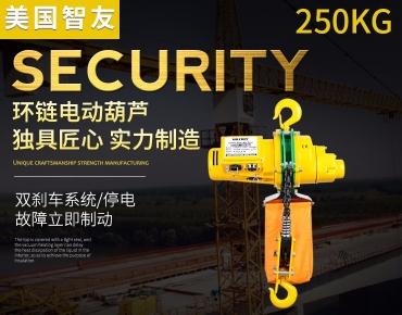 智友牌环链电动葫芦 250kg